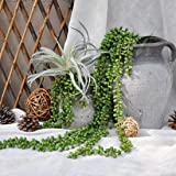 JUSTOYOU 2 Pack Artificial Succulents Plants String of Pearls Hanging Plants for Outdoor Wedding Garden Home Decor Unpotted