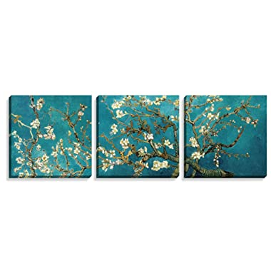 Canvas Wall Art - Almond Blossoms Van Gogh Modern Art Reproduction Canvas Prints Stretched Gallery Wrap Ready to Hang -12 x12  x 3 pcs for Wall Decor- Nuolan Art-P3L3030-011