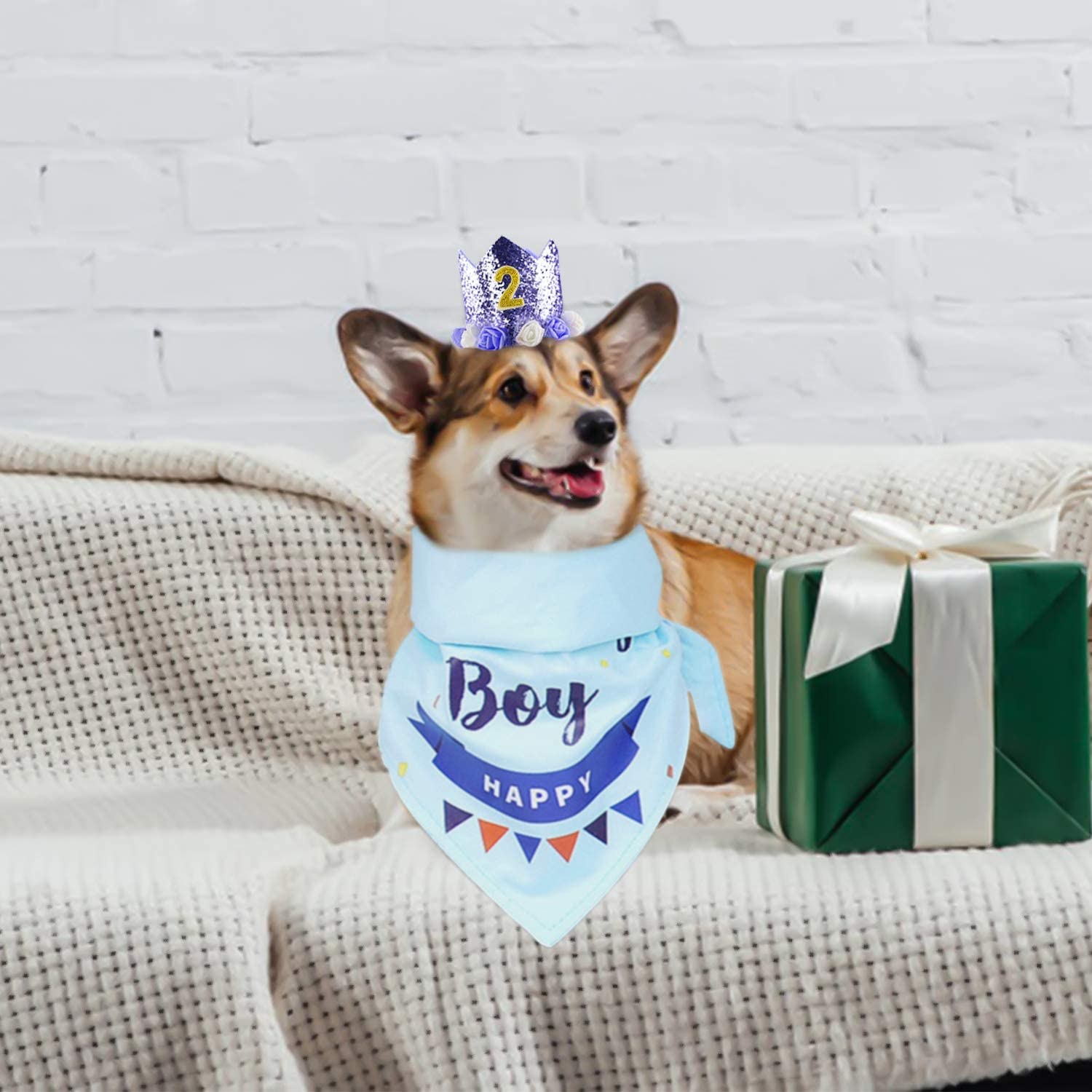 Dog Birthday Party Supplies with Hat /& Dog Happy Birthday Banner and Dogs First Birthday Party Crown and Triangle Scarf Suitable Dogs zhongfeistore Dog Birthday Bandana Girl Boy