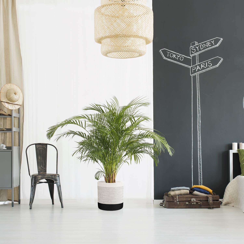 Blanco/&Negro H x 11 D DOKEHOM DKA0627WBM tela de cuerda de algod/ón de la canasta para 10 macetas de piso de la olla de interior -11 - almac/én cesta organizador Modern Home Decor