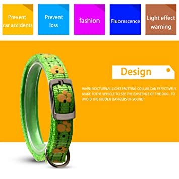 Shentukeji Nylon Dog Leash, Strong and Durable Traditional Style Leash with Easy to Use Collar Hook, Available in Multiple Widths and Colors
