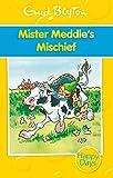 Mister Meddle's Mischief