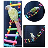 LITTLEGRASS 12 Steps Bird Toys 31 inch Wood Bird