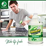 OdoBan Multipurpose Cleaner Concentrate, 2