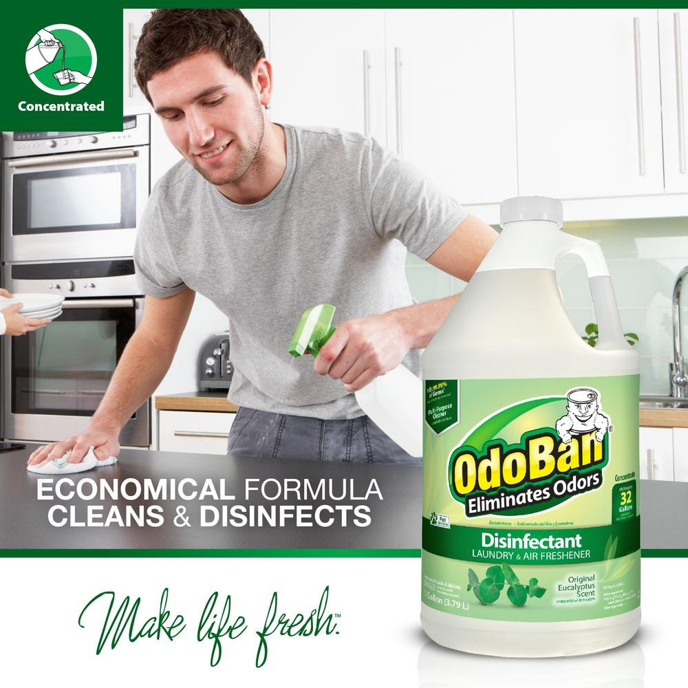 OdoBan Concentrate Disinfectant Laundry and Air Freshener Eucalyptus Scent 4 Gallons by OdoBan (Image #5)