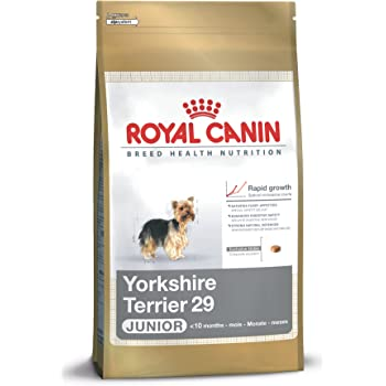 royal canin breed health nutrition yorkshire terrier adult dry dog food 10 pound. Black Bedroom Furniture Sets. Home Design Ideas