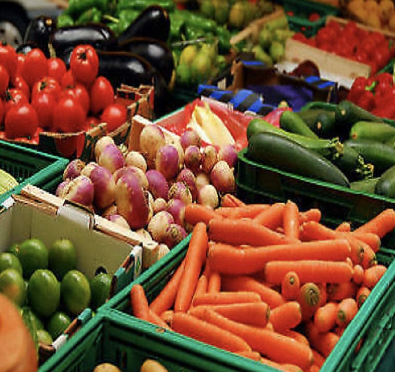 Heirloom 30,000 Plus Seeds Non GMO Survival Vegetable Food Seed Kit Bank Package