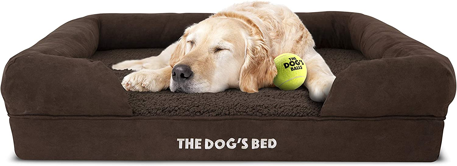The Dog's Bed Review