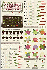 AMD PRINT Gardeners Poster Garden Vegetable Growing Cheat Sheet Simple Wall Art Hanging Painting Paper Photography Watercolor Living Classroom Home Decor No Frame