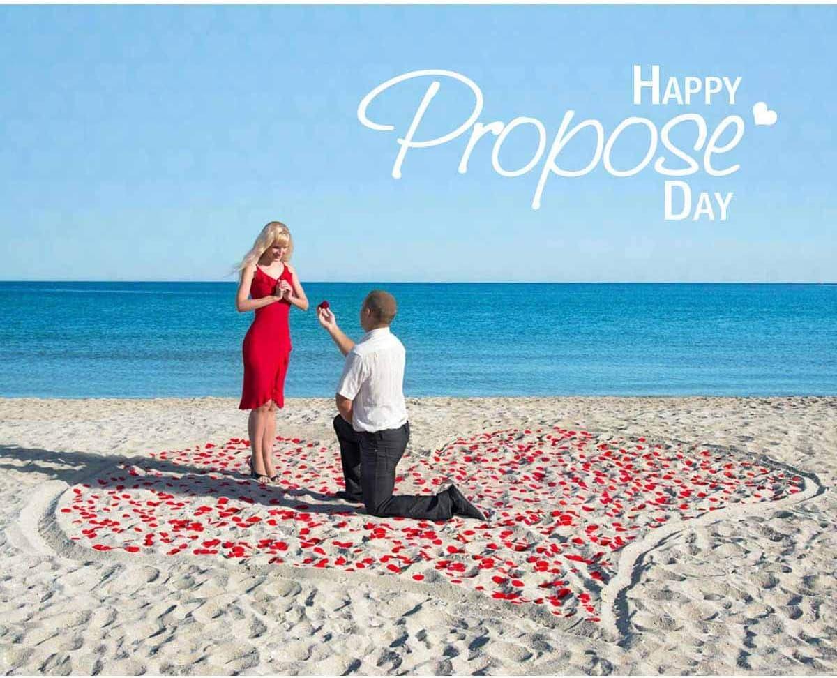 Lot de 300 p/étales de rose en soie pour d/écoration de mariage ou de Saint-Valentin Rouge