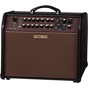BOSS ACS Acoustic Singer