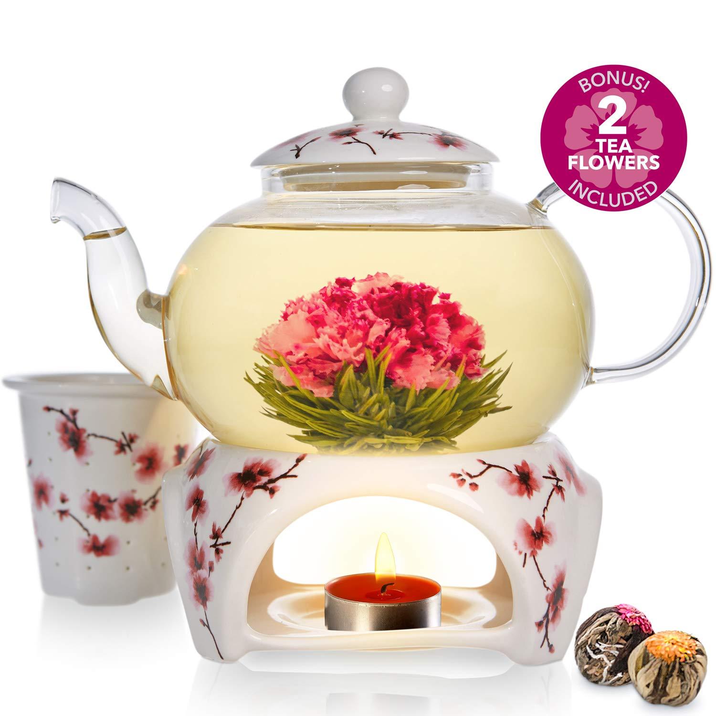 Teabloom Cherry Blossom Teapot & Flowering Tea Gift Set (6 Pieces) - Stovetop Safe Glass Teapot (28oz/800ml), Porcelain Lid, Teapot Warmer, Porcelain Loose Tea Infuser + 2 Gourmet Flowering Teas