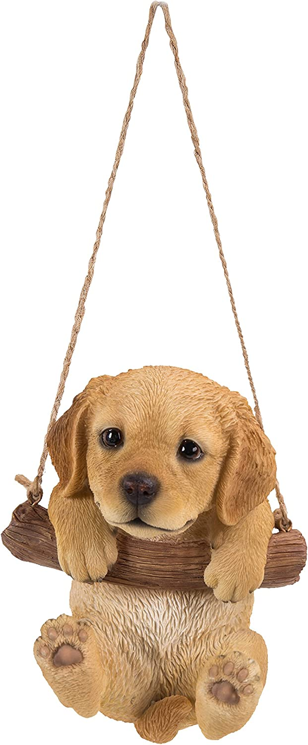 Hanging Golden Retreiver Puppy