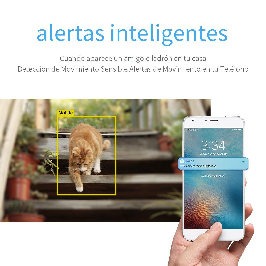 Smart IP Cámara Inalámbrica de Seguridad Exterior, Resistente a la Intemperie, Admite Tarjeta Micro SD 64G (No Incluye), Vision Nocturna, con Servicio ...