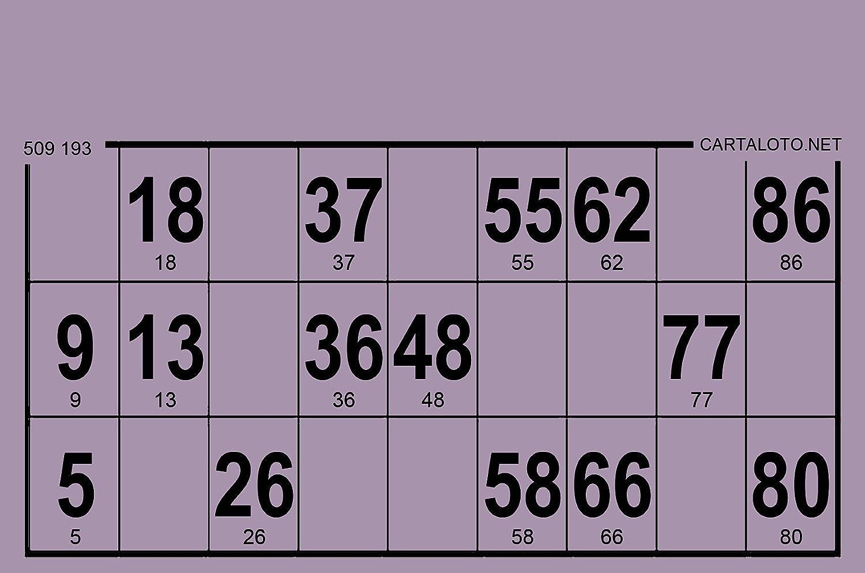 Violet Loto//Bingo CARTALOTO 96 Cartons Bristol 224 GR