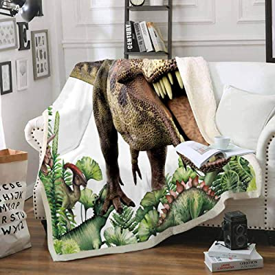 Homefit Summer Cartoon Blanket Sherpa Blanket Dinosaur Throws for Kids (1, 50x60 inch): Home & Kitchen