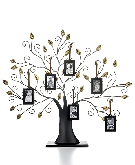 Amazon.com: Family Tree w/6 Hanging Picture Frames - Family Tree w/6 ...