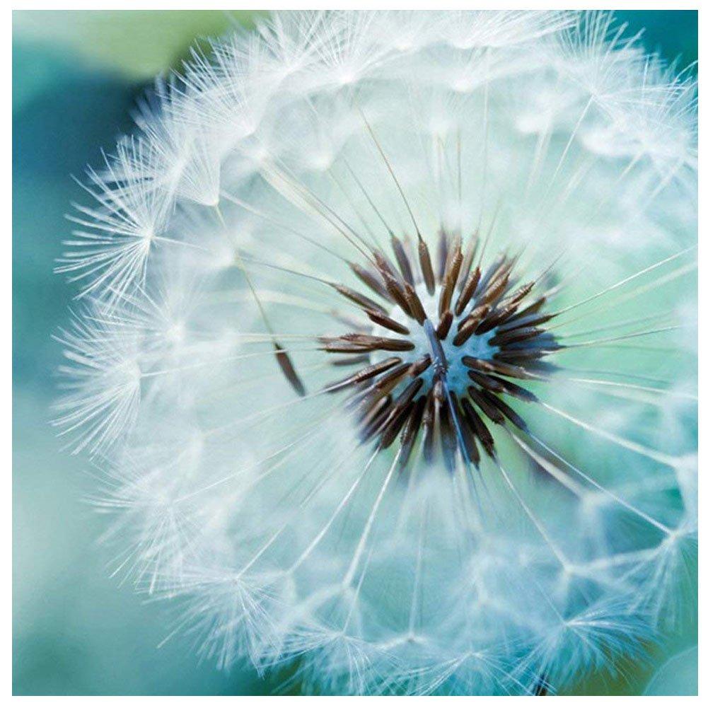 5d Pintura Por Diamantes (6511) Flor