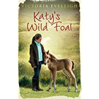 Katy's Exmoor Ponies: Katy's Wild Foal: Book 1