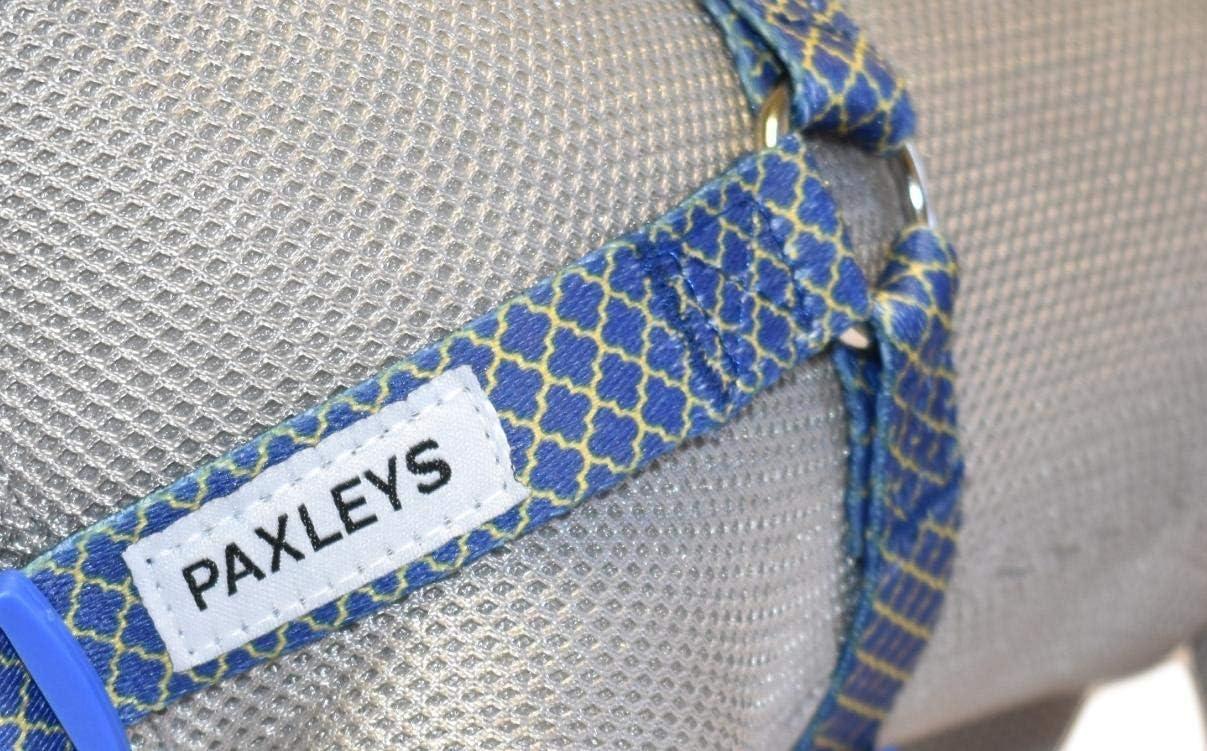 Paxleys Luxe Dor/é et bleu Art D/éco Chien Harnais de taille moyenne et grande
