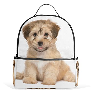 fc8fbbad4547 Image Unavailable. Image not available for. Color  Cute Havanese Puppy Dog  Backpack ...