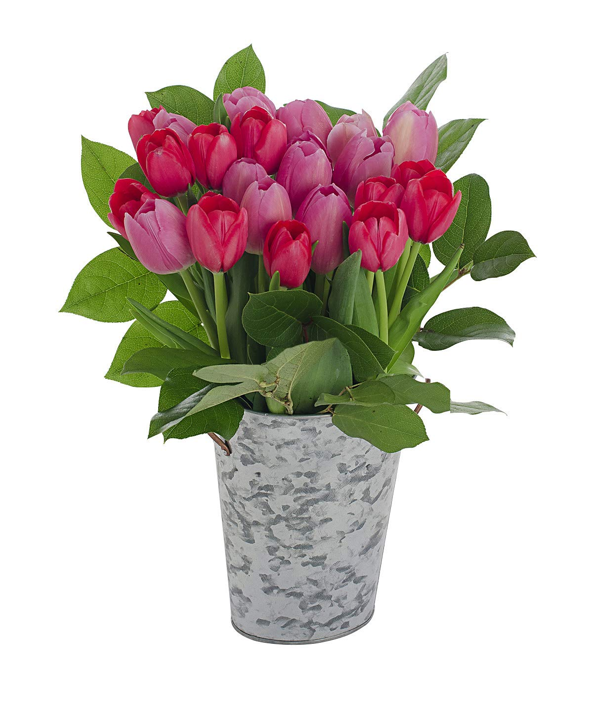Stargazer Barn Hot Lips Bouquet, Fresh Pink & Red Tulips With Vase, 24 Count