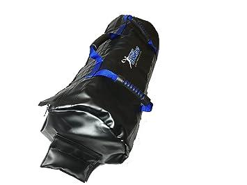 Amazon.com: Ultimate bolsa de arena fuerza el paquete bolsas ...