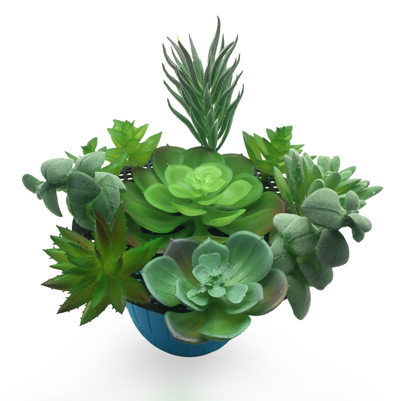 PietyDeko Suculentas falsas, 10pcs Verde suculentas artificiales y ornamentos de plantas de cactus para la decoración de la pared de plantas materiales de ...