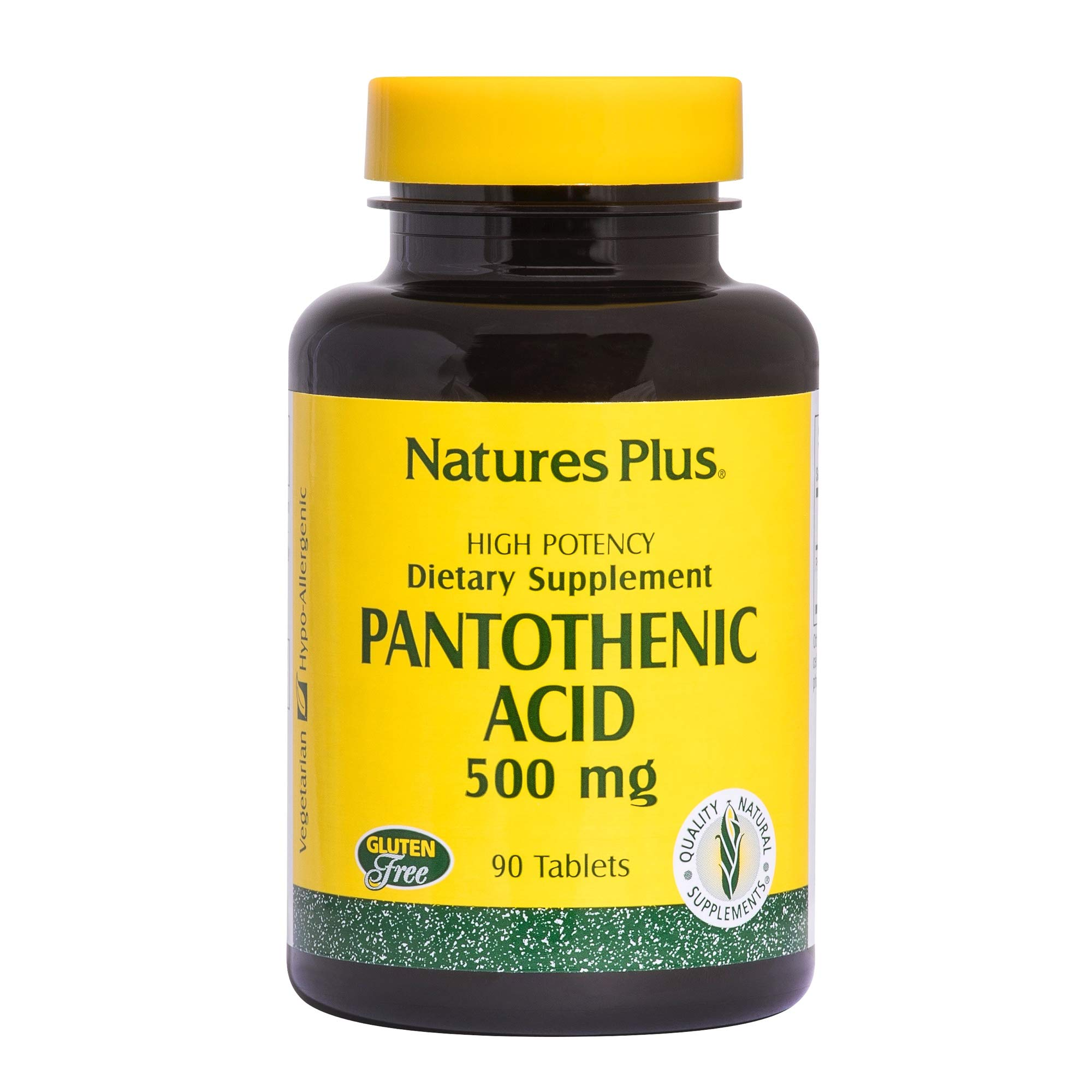 NaturesPlus Pantothenic Acid - 500 mg, 90 Vegetarian Tablets - Vitamin B5 Supplement, Supports Food Metabolism, Promotes Healthy Nervous System, Energy Production - Gluten-Free - 90 Servings