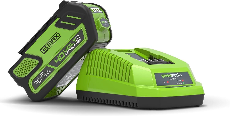 Greenworks Tools 682910907 Cargador Universal, 40 V, Verde: Amazon ...