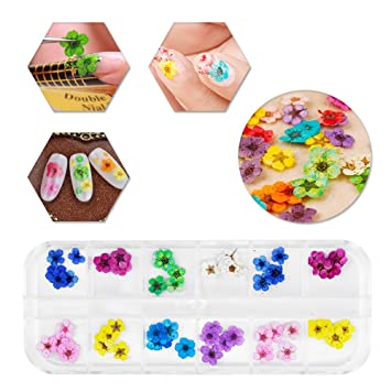 Amazon 12 Colors Nail Dried Flowers 3d Nail Art Sticker