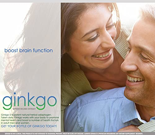 Ginkgo Biloba 550 mg Extract Capsules Supports Brain Health, Mental Alertness, Concentration and Focus Natural Energy Booster 30 Day Supply VH Nutrition