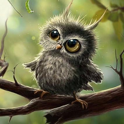 Image of: Barn Owl Image Unavailable Amazoncom Amazoncom Whitelotous Diy 5d Diamond Painting Cute Owl Rhinestone