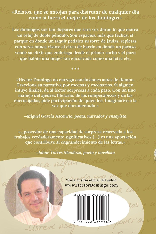 Ficciones de domingo (Spanish Edition): Héctor Domingo: 9781492364986: Amazon.com: Books