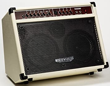 KEYTONE Acoustic Amplifier For Acoustic Guitar And Microphone Input