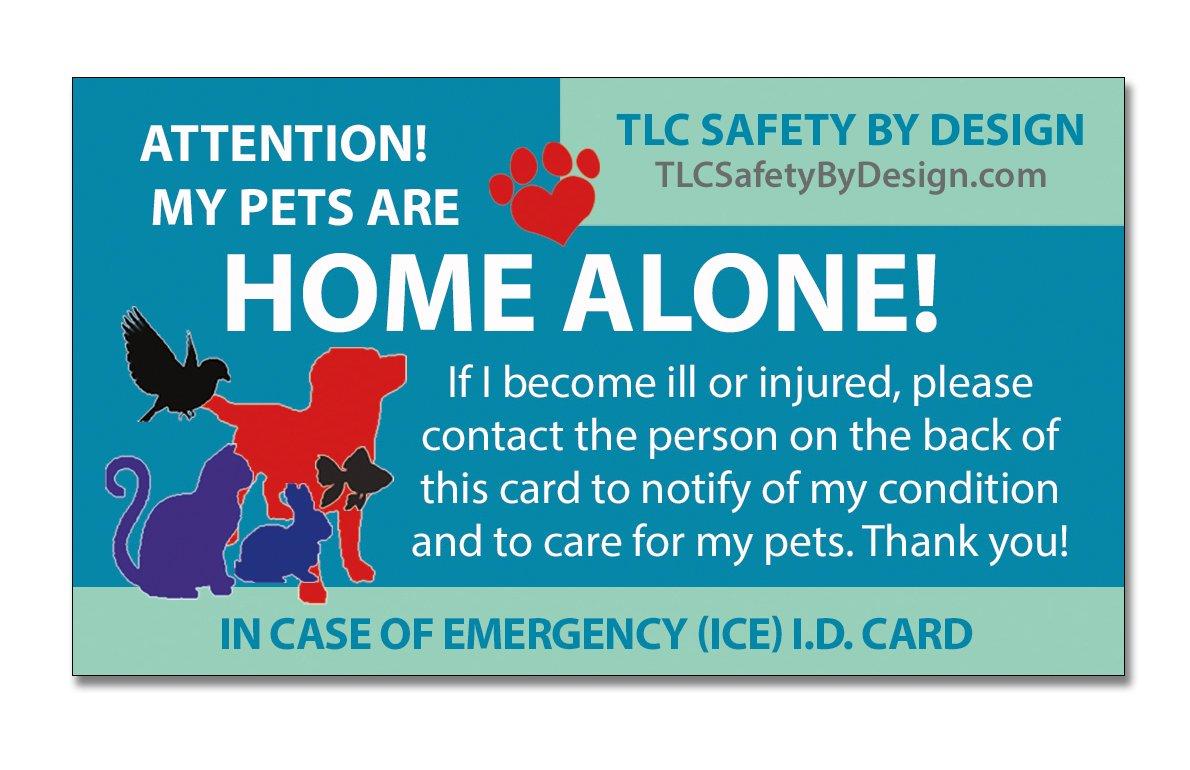 Amazon.com: TLC diseño de Por de seguridad 4 Pk My mascotas ...