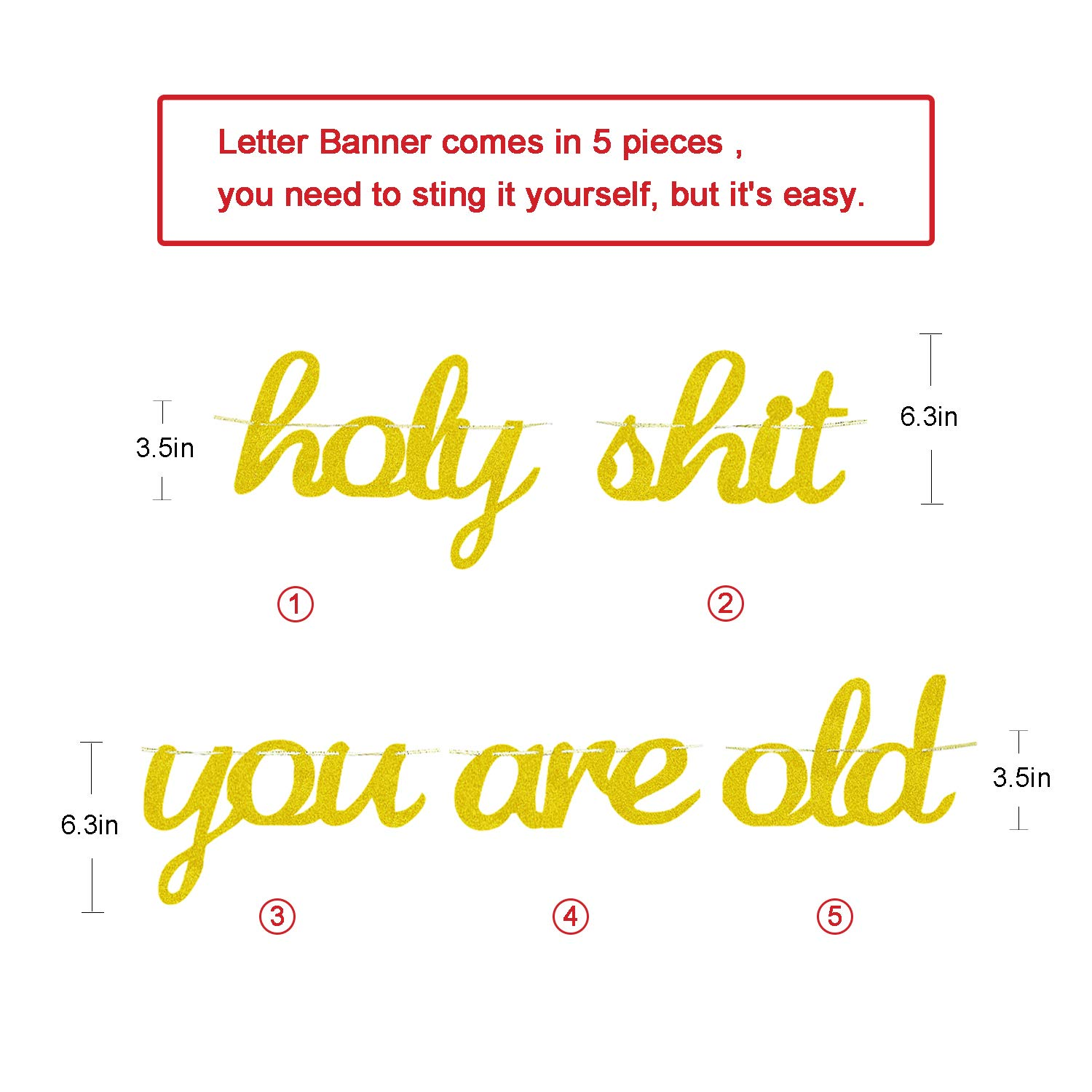 Funny 30th 40th 50th 60th 70th 80th 90th or Other Age Bday Decor Birthday Party Decorations Supplies Gold Glitter Holy Sht You are Old Cursive Banner