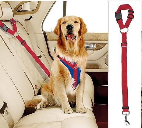 Plifet 2 Arnés para Cinturón de Seguridad para Perro, Gato y Perro ...