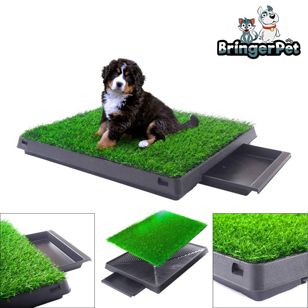 BringerPet Indoor Puppy Dog PET Potty Training Pee PAD MAT Tray Grass House Toilet W/Tray by BringerPet