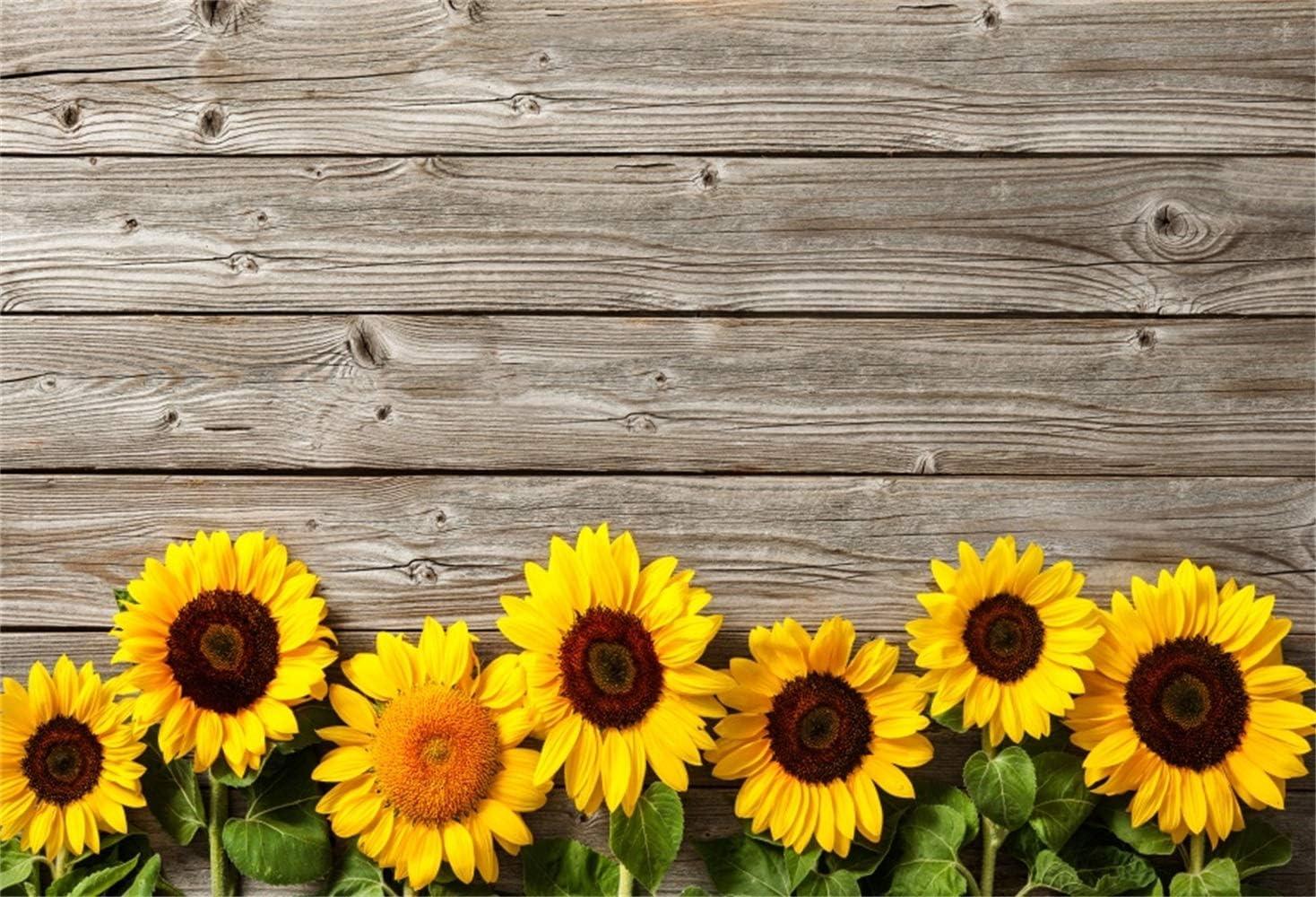 5x5FT Vinyl Photo Backdrops,Yellow,Daisies Florals Flowers Photoshoot Props Photo Background Studio Prop