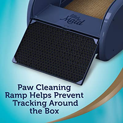 Paw Cleaning Ramp