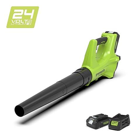 Greenworks 2402207UA Soplador Axial Inalámbrico, 24 V, Verde