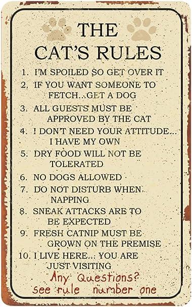 Las normas del gato lata Metal novedad signo Top 10 reglas de su gato Kitty demanda Nuevo: Amazon.es: Hogar