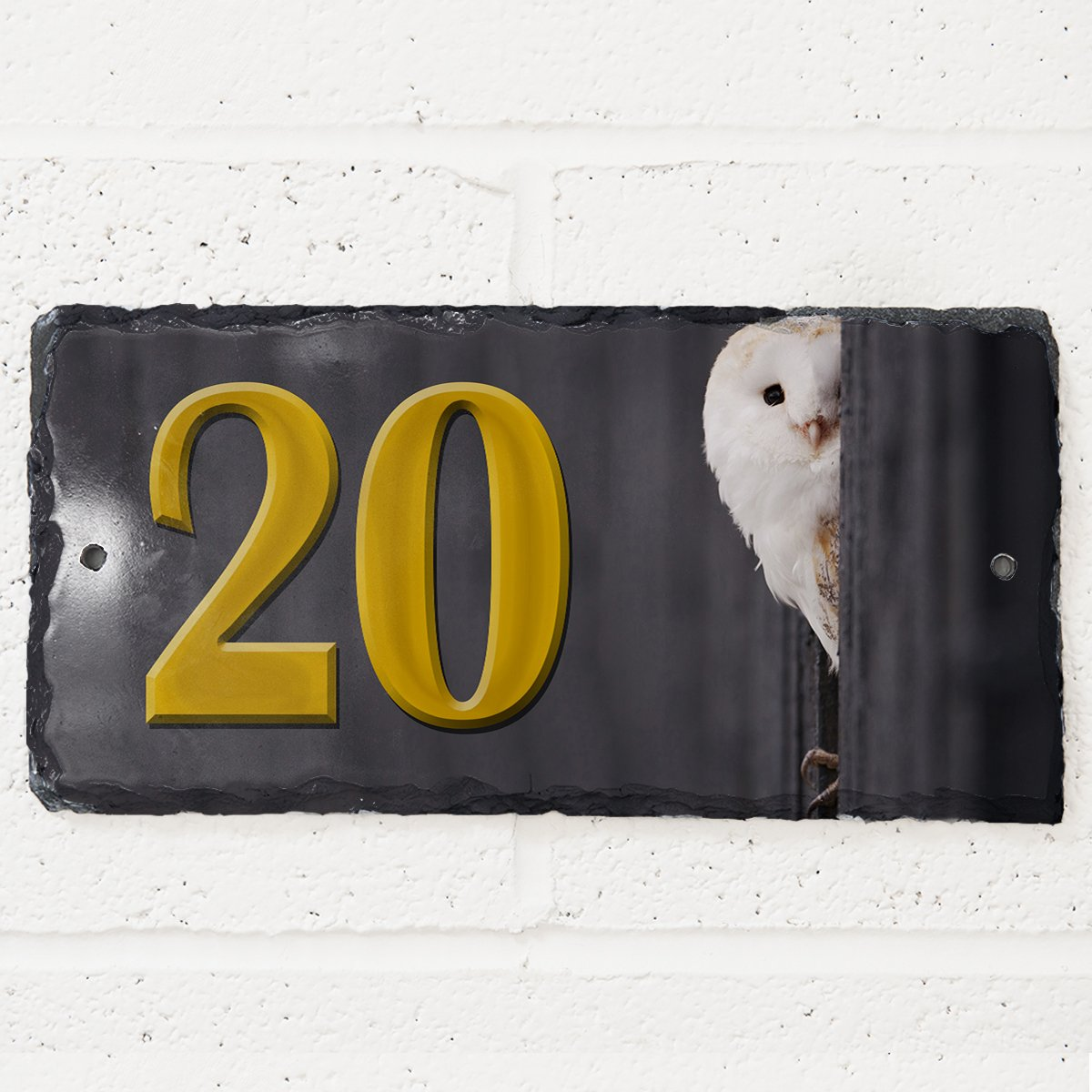 Barn Owl British Bird Wildlife SL104 House Slate Personalised Name Number Gate Plaque KRAFTYGIFTS KHS100
