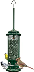 Squirrel Buster Legacy Squirrel-proof Bird Feeder w/4 Metal Perches, 2.6-pound Seed Capacity
