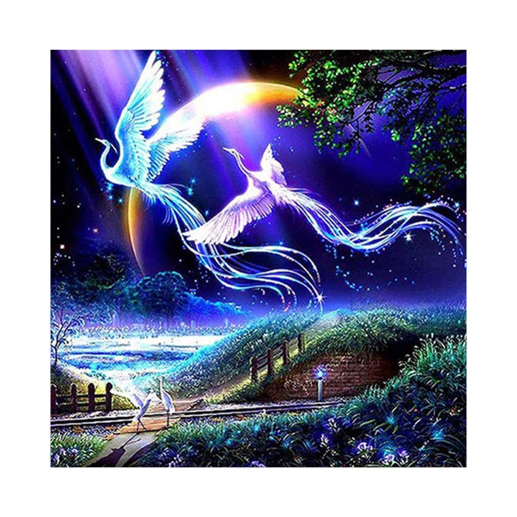 5D Embroidery,Hoshell 5D Full Square Dirll Embroidery Paintings Rhinestone Pasted DIY Diamond Painting (A)