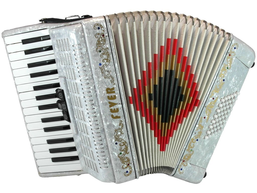 Fever F3048-WH Piano Accordion with 3 Switches, 30 Keys and 48 Bass, White