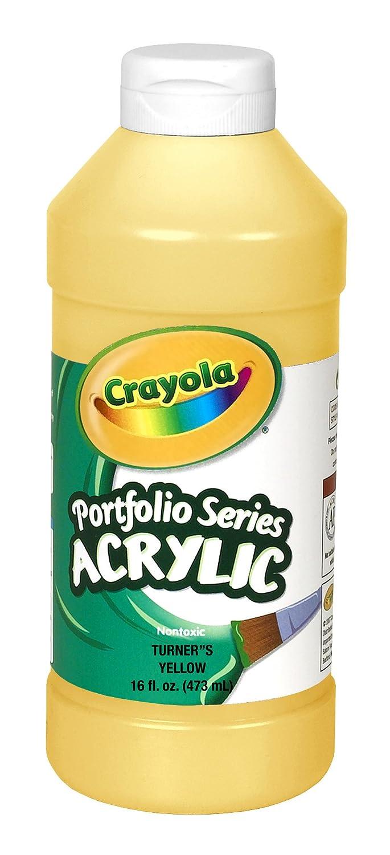 Crayola portafolio serie de 16 ounce pintura envio for Aerografo crayola amazon
