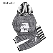 Toddler Infant Baby Boys Dinosaur Long Sleeve Hoodie Tops Sweatsuit Pants Outfit Set (0-6 Months, Grey)