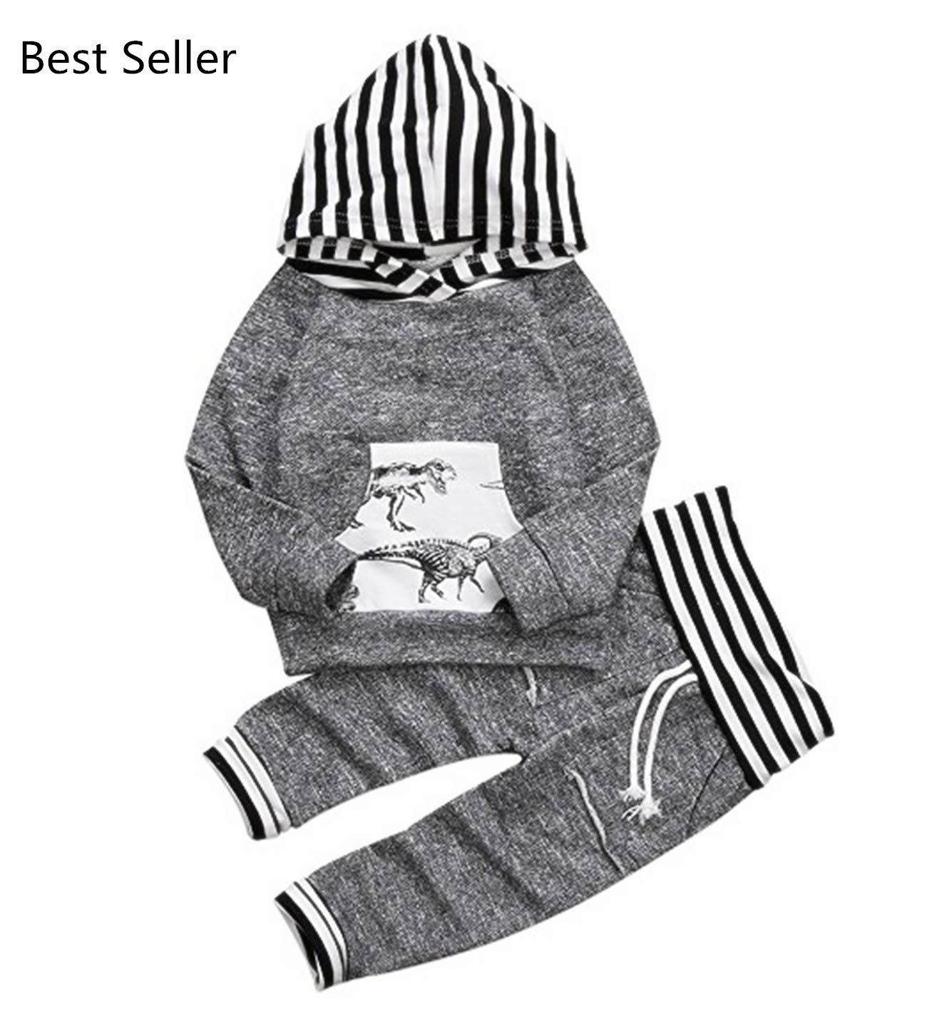 CPEI Toddler Infant Baby Boys Dinosaur Long Sleeve Hoodie Tops Sweatsuit Pants Outfit Set (18-24 Months, Grey)